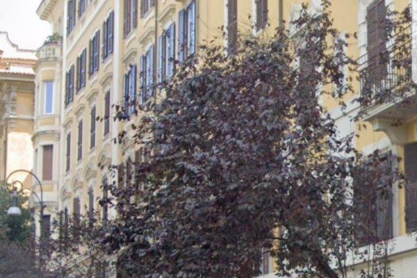 Prati –  appartamento all'asta in Viale Mazzini